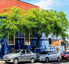 Floripa, cores e sombra (silwittmann) Tags: florianopolis sc santacatarina floripa brasil brazil silwittmann 2019 centrohistorico oldcity urban cityscape