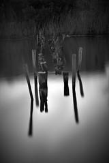Pier bw (sciatore73!) Tags: black white monochrome water massaciuccoli torre del lago puccini monocromatico bianco e nero lake