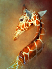 Giraffe (warrencarl) Tags: ipad warrencarl apple app manipulation effect edited enhancement stylized textures filters layers art artistic photocomputerart photoart gettyimages procreate snapseed touchretouch stackables tangledfx pseudo tonemapping painterly
