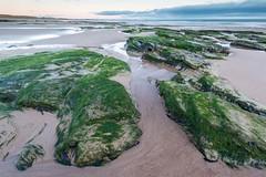 Green (digiphill) Tags: 2019 coast coastal cresswell cresswellbeach february northeast northeastcoast northumberland northumberlandcoastaonb sunrise winter