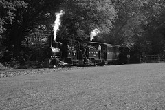 BWLR 88050bw (kgvuk) Tags: bwlr bredgarandwormshilllightrailway kent railway narrowgauge train steamtrain locomotive steamlocomotive steamengine zambezi 042t limpopo 060t