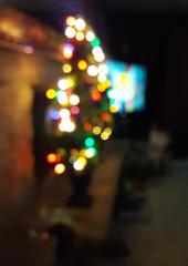 Christmas tree by the fireplace, TV, blur, bokeh, winter, Lakota Lhamo Ling, Dash Point Road, Washington, USA (Wonderlane) Tags: 201812140843360 christmastreebythefireplace tv blur bokeh winter lakotalhamoling dashpointroad washington usa christmas tree by fireplace
