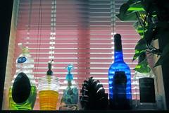 Kitchen window (Reva G) Tags: window blinds pink bottle pinecone plant windowsill dishsoap soap blue green pothos sunlight