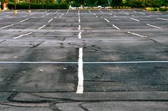 Undulating Parking Lot (Bracus Triticum) Tags: undulating parking lot indianapolis インディアナポリス indiana インディアナ州 unitedstates usa アメリカ合衆国 アメリカ 8月 八月 葉月 hachigatsu hazuki leafmonth 2018 平成30年 summer august