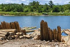 Tamatave / Туамасина (dmilokt) Tags: природа nature пейзаж landscape река river dmilokt
