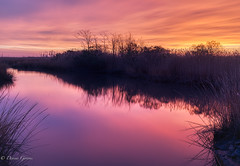 Just Before Sunrise (dngovoni) Tags: autumn bombayhook delaware fall landscape sunrise water