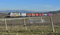 LAVERN (Andreu Anguera) Tags: ferrocarril tren mercaderies mercancías teco renfe 253070 lavern subirats altpenedès catalunya andreuanguera