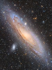 The Andromeda Galaxy - M31 (Andrew Klinger) Tags: