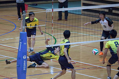 20180512_IMG_7152 (ko_en_volleyball_para) Tags: スポーツ sports バレーボール volleyball パラ para 聴覚障害 deaf the 18th national disabled competition hearing impaired area preliminary 2018 第18回 全国障害者スポーツ大会聴覚障害者バレーボール競技 地区予選大会 大田区体育館 otacity general gymnasium 栃木 tochigi 東京 tokyo