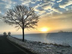 Sonnenaufgang in der Börde bei Wanzleben (daiqr.wordpress.com) Tags: sonnenaufganginderbörde sonnenaufgang sonne natürlich natur webflieger wanzleben börde