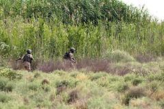 150601-A-YV246-025 (Matthew Bailey Photos) Tags: camptaji 5thsquadron 82ndabndiv 3rdbde assist advise usarmy iraq training iraqiarmy 73rdcavalryregiment 20thpublicaffairsdetachment arcent 573cav isil daish combinedjointtaskforceoperationinherentresolve islamicstateofiraqandthelevant m16rifle m249squadassaultweapon m240b 76thbrigade 16thdivision oir operationinherentresolve operationinherentresolute soldiers comcam 2505thparachuteinfantryregiment 2505thpir anzac australianarmy newzealandarmy iq