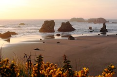 USA- OR - Sunset on Bandon Beach (mda'skaly) Tags: oregon usa beach plage sand ocean sea sunset couchant rocks rochers couleurs colors lumière light