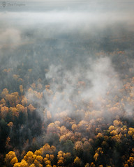 Fog in forest (liseykina) Tags: russia autumn nature drone fromabove landscape forest river fog mavicpro
