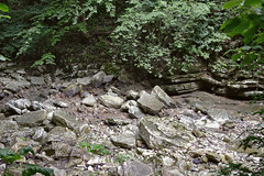 _Sochi_Uschele_Agura_2009_07_08 (Бесплатный фотобанк) Tags: gorge krasnodarkrai river russia sochi агура краснодарскийкрай сочи россия ущелье река природа nature гора большойахун