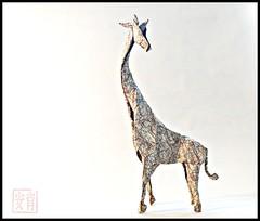 Giraffe de kamiya satochi (yoan.remy) Tags: origami giraffe kamiyasatoshi
