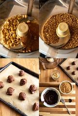 Chocolate Peanut Butter Candy Bites [The Vegan 8 Cookbook] (Yack_Attack) Tags: vegan vegetarian food dessert snack recipe blog easy thevegan8 cookbook glutenfree soyfree dairyfree brandidoming veganyackattack peanutbutter chocolate candy bites coconutsugar foodphotography stylist nikon d750 macro plantbased