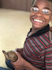 Turtle fan?