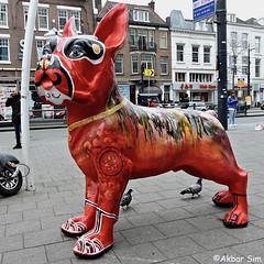 Rotterdam Street Art (Akbar Sim) Tags: rotterdam rotjeknor roffa holland nederland netherlands streetart urbanart akbarsim akbarsimonse