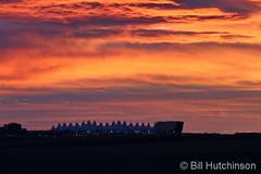 February 3, 2019 - A gorgeous sunrise over DIA. (Bill Hutchinson)