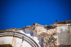 Antigua Guatemala, Sacatepéquez (tartahc) Tags: avvoltoio antigua guatemala ruins vulture recoleccion santiagodeguatemala antiguaguatemala ruinas coloniale hispanic