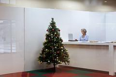 9910 (Nils Jorgensen) Tags: christmas tree laptop bauble office woman chrsitmastree