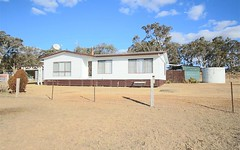 1277 Black Swamp Road, Tenterfield NSW