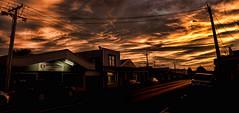 last light (glasnevinz) Tags: newzealand wairarapa martinborough jellicoestreet sunset cloud night sky