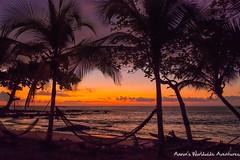 Sunset at San Pedrillo Beach (adventurousness) Tags: drake bay beach costa rica travel sunset traverling hammock parque nacional corcovado bahia photo photography traveler bahiadrake costarica drakebay parquenacionalcorcovado travelphoto travelphotography