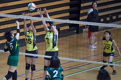 20180512_IMG_7267 (ko_en_volleyball_para) Tags: スポーツ sports バレーボール volleyball パラ para 聴覚障害 deaf the 18th national disabled competition hearing impaired area preliminary 2018 第18回 全国障害者スポーツ大会聴覚障害者バレーボール競技 地区予選大会 大田区体育館 otacity general gymnasium 栃木 tochigi 東京 tokyo