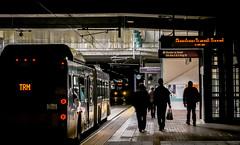 (el zopilote) Tags: seattle washington architecture cityscape street people signs wheels buses powerlines lumix gf1 milc m43 lumixgvario1442mmf3556asphmegaois luzbajalowlight