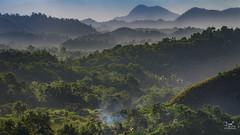 Welcome to the Jungle (Bram de Jong) Tags: landscape bohol jungle sunset mist mountain trees forrest travel smoke tripadvisor philippines asia polfilter asiafavorites happyplanet