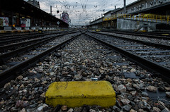 Catenárias e carris (TeylorDelight) Tags: lisboa nightphotography photography street streetphotography agameofcolors way2ill train tram tracks trainstation