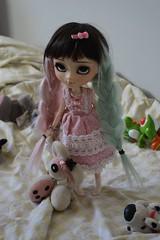 Lyoko - Pullip Ddalgi (kamidolls) Tags: pullip doll dolls pullips toys obitsu wig poupée collection custom customdoll pullipddalgi ddalgi groove