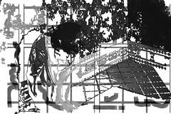 18-416 (lechecce) Tags: 2018 blackandwhite abstract art2018 sharingart shockofthenew artdigital netartii awardtree trolled