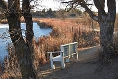A bench w a view along the trails... (Jane Lazarz Nature Photography) Tags: gleneagle northgatetrails janeelizabethlazarz walkingcolorado nikon p900 nikonp900 coloradosprings colorado janelazarz breathtakingcolorado hiking walking