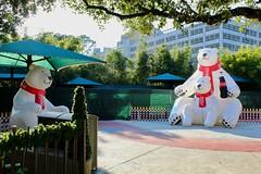 Polar Bears (Piedmont Fossil) Tags: houston texas zoo coke inflatable polar bear