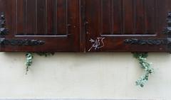 (Eun Kim) Tags: krakau kraków cracow krakow poland polen 폴란드 크라쿠프