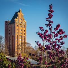Wasserturm mit Farben (floerioHH) Tags: 2018 autumn hamburg autumncolors stellingen city xh1 fujixseries fujifilm herbst herbstfarben