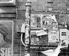 West End (Nathan A. West) Tags: mediumformat medium format 120 120m maiya mamiya rb67 6x7 film analogue scan eppson v550 west end brisbane city