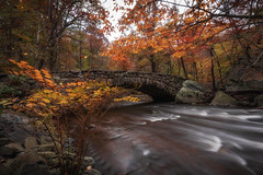 Boulder Bridge (kderricotte) Tags: boulderbridge rockcreekpark washingtondc sony sonya7iii 1018mm longexposure autumn fall leaves water bridge sel1018 ilce7m3