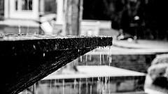 Untitled (#Weybridge Photographer) Tags: canon 5d mk ii mkii eos slr dslr adobe lightroom nepal kathmandu monochrome fountain water