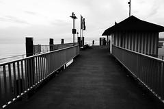 Standing at the edge (stefankamert) Tags: stefankamert noir lakeconstance bodensee blackandwhite blackwhite railing edge water grain ricoh gr grii highcontrast lines absoluteblackandwhite