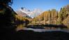 la bellezza da la natira [f] (Toni_V) Tags: m2409617 rangefinder digitalrangefinder messsucher leica leicam mp typ240 type240 35lux 35mmf14asphfle summiluxm hiking wanderung randonnée escursione alps alpen albula palpuognasee laidapalpuogna laidapalpuegna graubünden grischun grisons switzerland schweiz suisse svizzera svizra europe atun autumn herbst bergsee mountainlake reflections lärchen landscape landschaft albulatal spinaspreda ©toniv 2018 181020