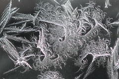 Frost (BSendelbach) Tags: frost ice window frostywindow crystals icecrystals