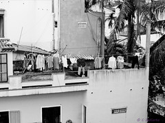 Miss Minh's Rooftop Laundry (happicamper.geo) Tags: 2013 bw canonsx230hs hoian msminh unesco vietnam laundry clothesline rooftop building