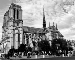 Notre Dame de Paris (Elîsaba_H) Tags: notredame architecture french historical monument canon80d blackandwhite monochrome église church notredamedeparis cathédrale france paris