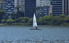 Sail and the City (Márcia Valle) Tags: riodejaneiro regata regatta sports esporte náutica lagoarodrigodefreitas brasil brazil campeonato championship nikon d5100 márciavalle lagoa sail sailing vela