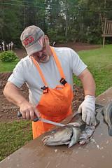 Filleting Cod (peterkelly) Tags: digital canon 6d northamerica canada newfoundlandlabrador cavendish atlanticcod cod fish hat orange overalls fillet filleting glove beard fisherman