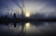 Morning Break (Sworldguy) Tags: morning foggy pond water landscape meadow park reflections sunrays silhouette wideshot moody forest serene