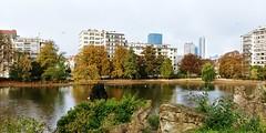 20181027_102047_HDR (tareqsmith) Tags: bruxelles belgique belgium brussels city ville park parc lake lac europe green